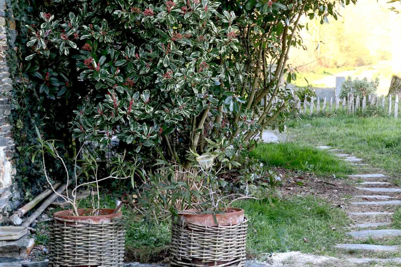 nous-lagrangedes3poulettes-jardin
